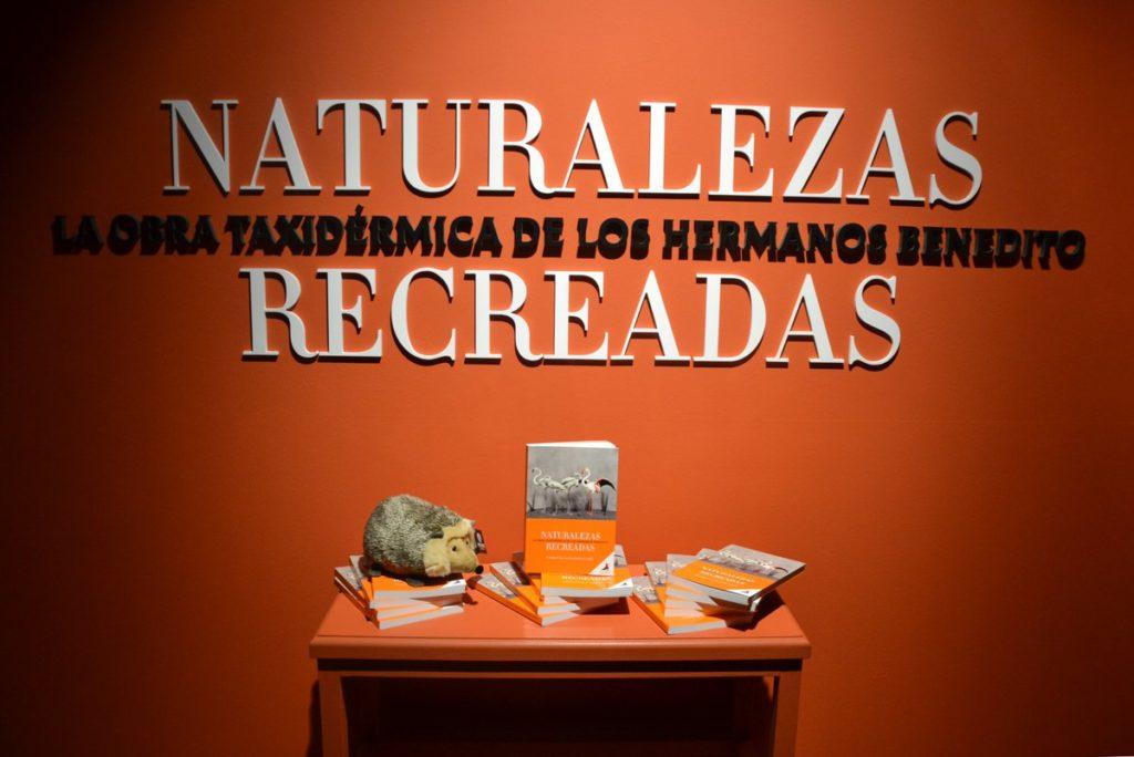 Naturalezas recreadas